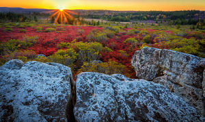 USA, West Virginia, Dolly Sods Wilderness Area. Sunset on tundra and rocks. Credit as