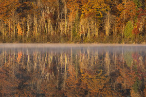 USA, Wisconsin. A cold morning on a Mill pond Lake in Autumn