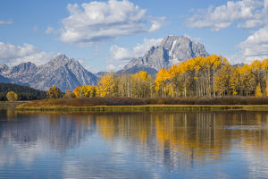 USA, Wyoming, Grand Teton National Park, autmn color along the Snake River Oxbow with Mt