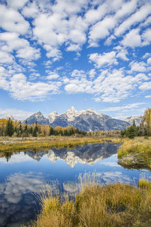 USA, Wyoming, Grand Teton National Park, autmn color along the Snake River at Schwabacher