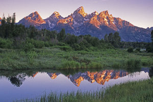 USA, Wyoming, Grand Teton National Park. Mountains reflect in beaver pond at sunrise