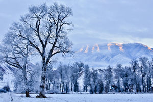 USA, Wyoming, Shell, Hoar Frost in the Valley, PR