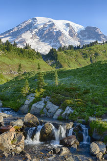 WA, Mount Rainier National Park, Edith Creek and Mount Rainier