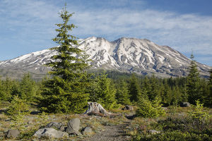 WA, Mount Saint Helens National Volcanic Monument, Mount Saint Helens, view from south