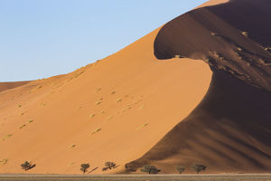 Wind sculpted, towering sand dunes of Sossusvlei in Namib-Naukluft National Park, Namibia