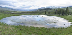 usa/yellowstone national park lamar valley view