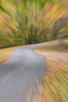 A zoom blur of country road in Autumn